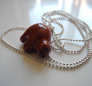 Halsband brunbjörn